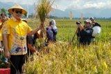 Partai Berkarya berkomitmen sejahterakan petani