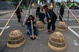 Siswa Sekolah Dasar (SD) mengikuti permainan tradisional