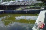 18 kelompok pembudidaya perikanan di Bantul terdampak banjir