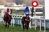 Piala Dunia pacuan kuda di Dubai dibatalkan