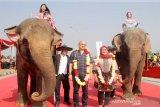 Dua ekor gajah betina binaan Taman Safari Indonesia (TSI) Cisarua Bogor, Iweng (50) dan Tati (27) usai mengalungkan bunga ke Bupati Bogor Ade Yasin dan perwakilan dari kedutaan, Duta Besar Republik Kuba, Nirsia Castro pada acara