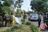 ASN di Mataram dikerahkan untuk bersihkan alat peraga kampanye