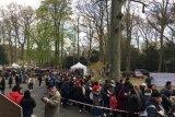 Meningkat drastis partisipasi pemilih di Belanda