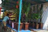 Peminat lapak di Pasar Dandangan Kudus melonjak