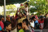 Ratusan warga Kulon Progo berebut belasan gunungan Nyadranan Agung