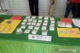 BNN ungkap kasus hasil bisnis narkoba disimpan di rekening KUD