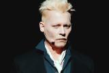 Johnny Depp belum pasti terlibat di