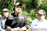 KLHK klaim tata kelola hutan di Kalteng tak hambat pembangunan