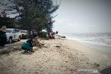 Pantai Ujung Pandaran terancam hancur akibat terus tergerus abrasi