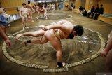 Turnamen sumo Jepang digelar tanpa penonton