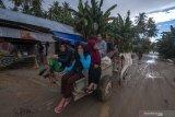 Akibat hujan deras, puluhan rumah di Palu terendam banjir