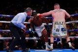 Tinju - Tekuk Joshua, Ruiz juara dunia kelas berat