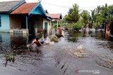 Dinsos Kalteng siap antisipasi dampak akibat banjir