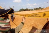 Penyelidikan KLHK terhadap kerusakan lingkungan di Bintan jalan di tempat