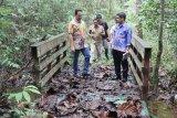 Pemkab Lamandau akan revitalisasi hutan kota