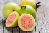 Khasiat jambu biji untuk kesehatan jantung hingga turunkan gula darah