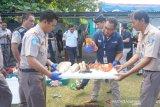 BKIPM Manado musnahkan komoditas perikanan tak berizin