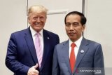Donald Trump to Joko Widodo: Committed to peace in Indo-Pacific region