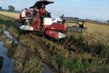 Modernisasi sistem genjot produksi pertanian Jateng