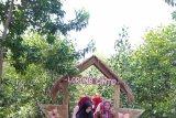Wisata Alam Pandan Alas Lampung Timur makin ramai