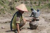 BMKG: Jawa-Bali dan Nusa Tenggara berpotensi kekeringan ekstrem