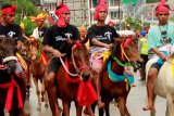 Parade 1001 Kuda Sandelwood digelar di Sumba Timur