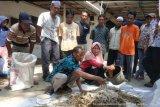 Mahasiswa Polbangtan beri materi pakan ternak alternatif