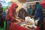 Sulam usus dan tapis andalan Lampung pada pameran Harganas di Kalsel