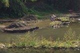 FKSS sebut penambangan liar mengancam ekosistem sungai