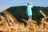 Patung kayu Melania Trump dibakar pada Hari Kemerdekaan AS