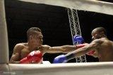 Artikel - Tibo Monabesa, mantan sopir angkot yang jadi juara tinju dunia