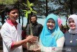 Peduli Pantai Tiram Padang Pariaman, OASE Kabinet Kerja tanam ribuan mangrove