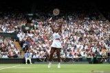 Serena yang berusia 37 tahun terinspirasi Tiger Woods