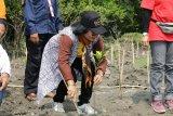 Pemprov Lampung gelar persiapan Festival Krakatau 2019 di Pulau Sebesi