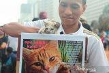 Komunitas pecinta hewan laporkan laki-laki makan kucing hidup-hidup ke polisi