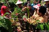 Maksimalkan pemanfaatan lahan untuk pengembangan komoditas pertanian di Kalteng