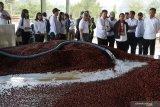 Menteri Badan Usaha Milik Negara (BUMN) Rini M. Soemarno (keempat kanan), didampingi Direktur Utama PT Perkebunan Nusantara (PTPN) XII Cholidi (kanan), Direktur Utama PTPN III Dolly Pulungan (keenam kanan), melihat proses pengolahan kopi di Kebun Kalisat, Kecamatan Ijen, Bondowoso, Jawa Timur, Selasa (16/7/2019). Menteri BUMN mendorong PTPN XII meningkatkan produksi kopi Arabica karena dimintai pasar luar negeri seperti Amerika Serikat, negara di Eropa, dan Arab Saudi. Antara Jatim/Seno/zk