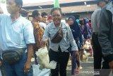 Pinsar tidak persoalkan kenaikan harga ayam