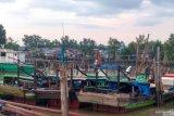 Ribuan nelayan Jambi masih gunakan pukat harimau
