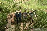 Tersangka kasus penebangan pohon di Hutan Sumbawa bertambah