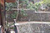 Pengelola Gunung Api Purba Nglanggeran mencegah monyet serang wisatawan