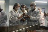 Sarang burung walet primadona ekspor Indonesia ke China