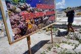 Transpalasi terumbu karang di lokasi tsunami