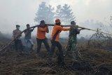 Polisi dan TNI Muarojambi padamkan kebakaran lahan 20 Hektare