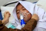 Dekan FK-UI: Hipoksia akibat  kabut asap sebabkan kerusakan organ tubuh