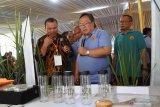 Menteri Perencanaan Pembangunan Nasional (PPN)/Kepala Bappenas Bambang Permadi Soemantri Brodjonegoro (kedua kanan), melihat bibit tanaman padi di Universitas Jember, Jawa Timur, Rabu (31/7/2019). Kunjungan Menteri PPN/Kepala Bappenas itu meninjau program perguruan tinggi di pengembangan Sustainable Development Goals (SDGs) yang didukung oleh Indonesia Climate Change Trust Fund (ICCTF) dan Bappenas, seperti sektor pertanian, pengembangan lahan berbasis lingkungan, dan bioteknologi yang dikembangkan Unej. Antara Jatim/Seno/zk.