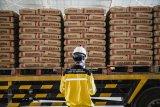Laba Semen Indonesia turun tajam meski pendapatan naik