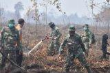 Prajurit TNI dan Petugas Badan Penanggulangan Bencana Daerah (BPBD) Muarojambi melakukan pendinginan di bekas lokasi lahan gambut yang terbakar, Kumpeh Ulu, Muarojambi, Jambi, Sabtu (3/8/2019). Kumpeh Ulu, Muarojambi yang berada di lahan gambut dengan kedalaman antara 1-3 meter merupakan areal terparah terkena dampak kebakaran di provinsi itu dengan luasan terbakar mencapai 50 hektare lebih dalam sepekan terakhir dan menjadi prioritas pemadaman darat dan dukungan pemadaman udara dari helikopter bantuan Badan Nasional Penanggulangan Bencana (BNPB). ANTARA FOTO/Usman Muhammad/ws/hp