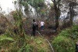 Luasan karhutla di Kalteng mencapai 200 hektare lebih