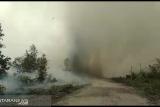 Hadapi puting beliung saat padamkan api, ini pernyataan pemadam Palangka Raya